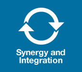 synergy and integration