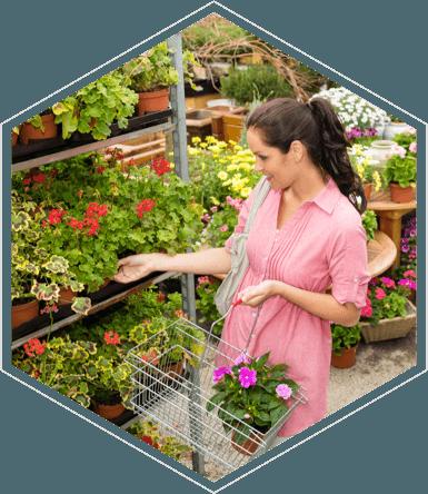 EPoS for Garden Centres & Plant Nurseries
