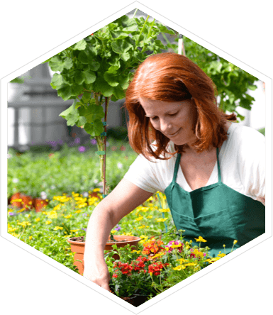 EPoS for Garden Centres & Plant Nurseries