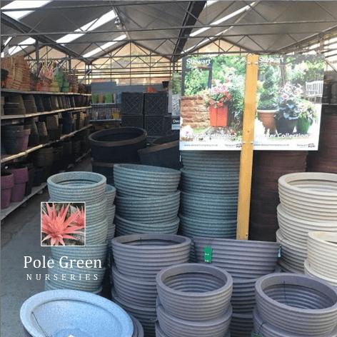 pole green